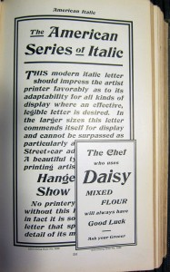American Italic 2 med res